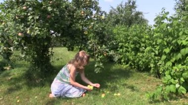 Pregnant girl sit under apple tree and gather fallen apple — Stock Video