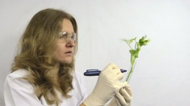 Lab woman write numbers on flask genetically modified pea plant — Stock Video