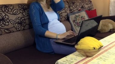 Pregnant serious woman using laptop computer at home — Stock Video