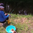 Woman sit on stump near pond, watch playing cat with small fish — Stock Video #53539109
