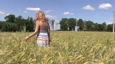 Woman walk through field of ripe rye in summer time — Stock Video