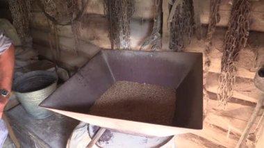 Farmer grind grain with equipment in farm mill. Flour processing — Stock Video