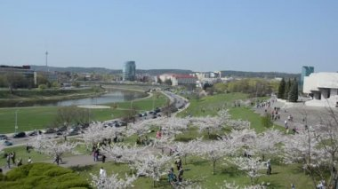 Tourists and citizens people enjoy leisure in spring cityspace — Vidéo