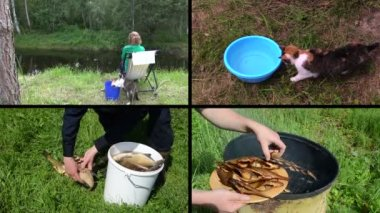 Woman angling with cat pet. Smoked fish. Video clips collage. — Stock Video