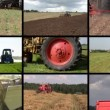 Tractor plow spray field, cut grass, harvest wheat. Clip collage — Stock Video #69724167