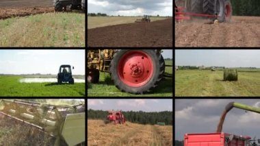 Tractor plow spray field, cut grass, harvest wheat. Clip collage — Stock Video