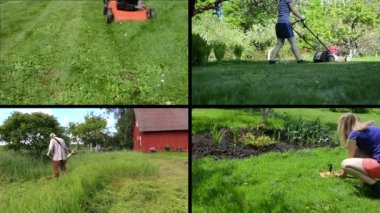 Gardener woman mow lawn and water. Man cut grass. Clips collage — Stock Video