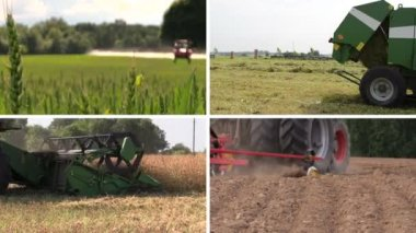 Field spray. Grass bales. Harvesting. Fertilize. Clips collage — Stock Video
