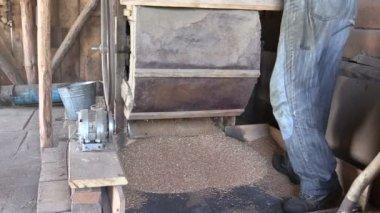Gros plan du vieux grain manuel, nettoyage des machines de la harpe dans la grange — Vidéo