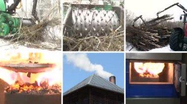 Tree branch crush. Burning wood granules. Smoke rise. Collage — Stock Video
