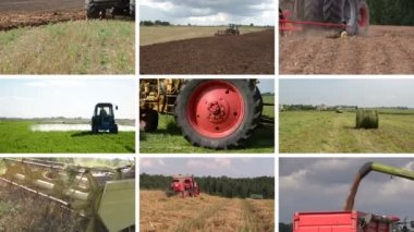 Tractor plow spray field, cut grass, harvest wheat. Collage — Stock Video