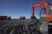 Crawler excavator — Stock Photo