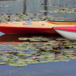 Kayaks on calm water. — Stock Photo #54701421