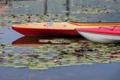 Kayaks on calm water. — Stock Photo
