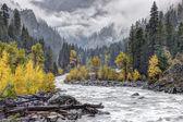 Wenatchee river through the mountains. — Stock Photo