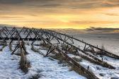 Winter on the prairie. — Stock Photo