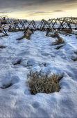Field in winter. — Stock Photo