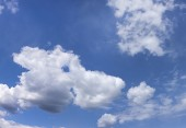 Animal shaped cloud. — Stock Photo