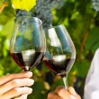 Woman and man drinking wine — Stock Photo #71510789
