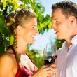 Woman and man drinking wine — Stock Photo #71510937