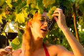 Woman with glass of wine in vineyard — Stock Photo