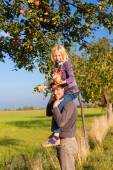 Father and daughter picking apple in autumn or fall — Stock Photo