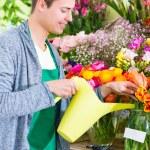 Florist working in flower shop watering plants — Stock Photo #79651494