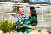 Female and male gardener in market garden or nursery — Stock Photo