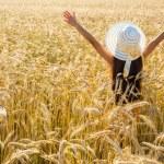 Girl on wheat field — Stock Photo #71512665