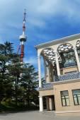 Tv tower — ストック写真