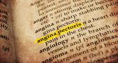 Dictionary word — Stock Photo