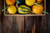 Pumpkins in a box — Stockfoto