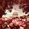 U.S. Capitol in Washington with Instagram filter look — Stock Photo #71033337