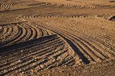Arados agrícolas cultivadas campo suelo fondo — Foto de Stock