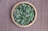 Fresh medical herb lemon-balm in basket — Stock Photo