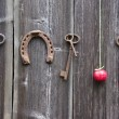 Ancient key, horseshoe and red apple on old wooden wall — Stock Photo #53871433