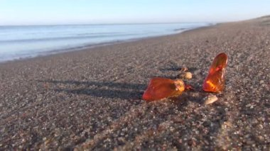 Beautiful natural amber pieces on sea morning beach sand — Stockvideo