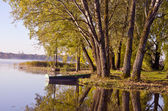 Autumn time lake landscape with boat and tree — Foto Stock