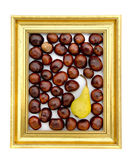 Conker fruits and pear in in golden retro frame — Stock Photo