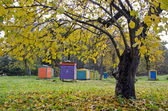 Colorful beehive in autumn time garden — Stockfoto