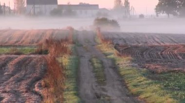 Morning rural farm field and road in frost rime and mist — Vidéo
