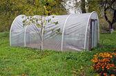 Plastic greenhouse hothouse in autumn farm garden — Stockfoto