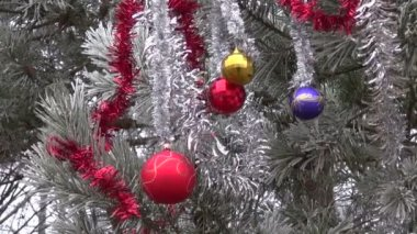 Winter hoarfrost and Christmas New Year toys on pine tree branch — Stock Video