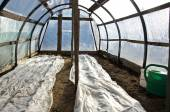 Greenhouse hothouse in early spring after vegetable seeding — Stock Photo