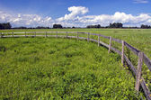 Farmland landscape with wooden fence — Stock fotografie