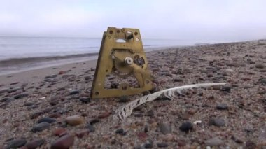 Antique clock brass gear and seagull feather on sea beach sand — Stock Video