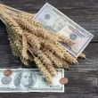 Agriculture harvest concept with dollars and wheat ears — Foto Stock #64740567