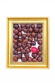 Conker fruits and red apple in in golden retro frame isolated on white — Stock Photo
