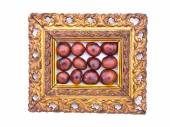 Conker fruits in antique ornate picture frame isolated — Stock Photo