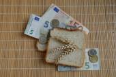 Slice of bread and wheat ears on Euro banknotes — Stock Photo
